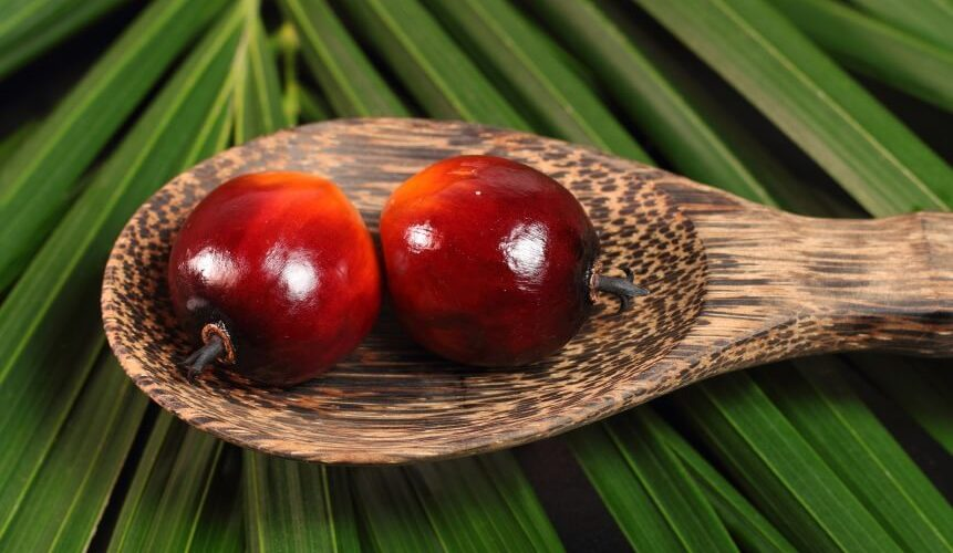 Red Palm Oil All The Way