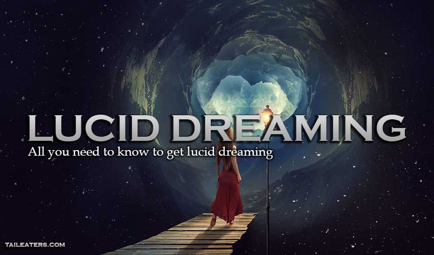 tkog-how: lucid dreaming for (real) dummies